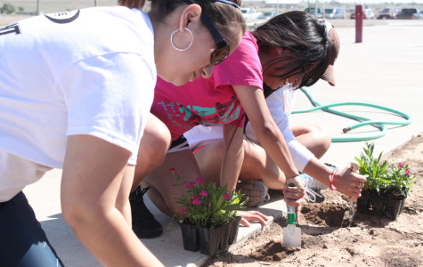 WTAMU hosts Arbor Day Celebration