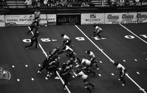Amarillo Venom halt the Wildcatters