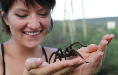 WT Student and Professor Increase Awareness of Texas Wildlife