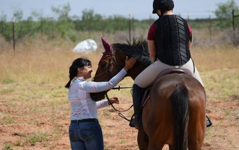 Equine Business is Dream Come True for WTAMU Grad Student