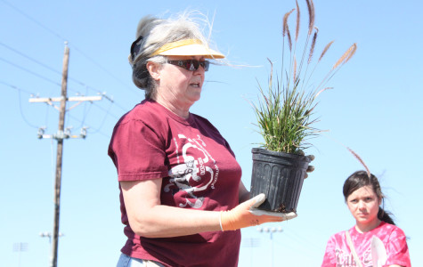 Arbor Day: This Week in Photos