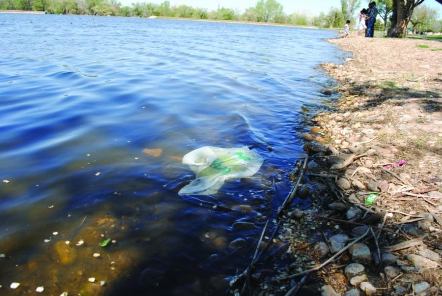 Trash floats at the edge of Thompson lake. Photo by Lisa Hellier.