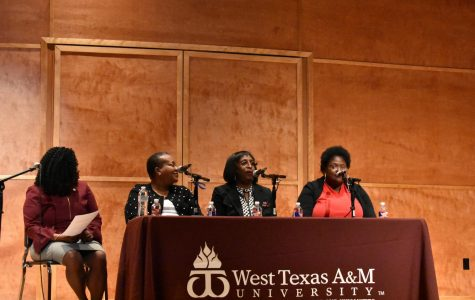Panel participants discuss feminism, race and diversity in schools