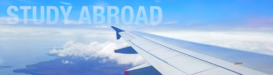 Header used by the Study Abroad Department for their website.