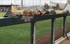 Buffs bats in full swing sweeping Javelinas