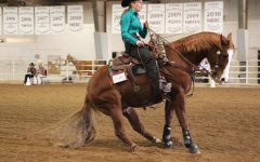 WT Equestrian Opens Three Day Show