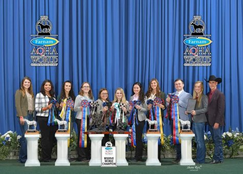 The WTAMU Horse Judging Team won NRHA world championships and placed as reserve champion at the AQHA world competition.